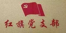 """咸宁市不动产登记中心:荣获""""红旗党支部?#32972;?#21495;"""