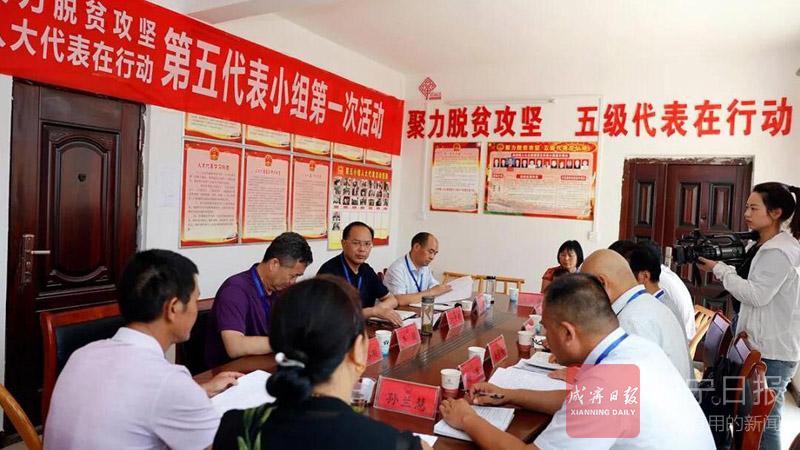 """咸宁市中院参加""""聚力脱贫攻坚、人大代表在行动""""活动"""