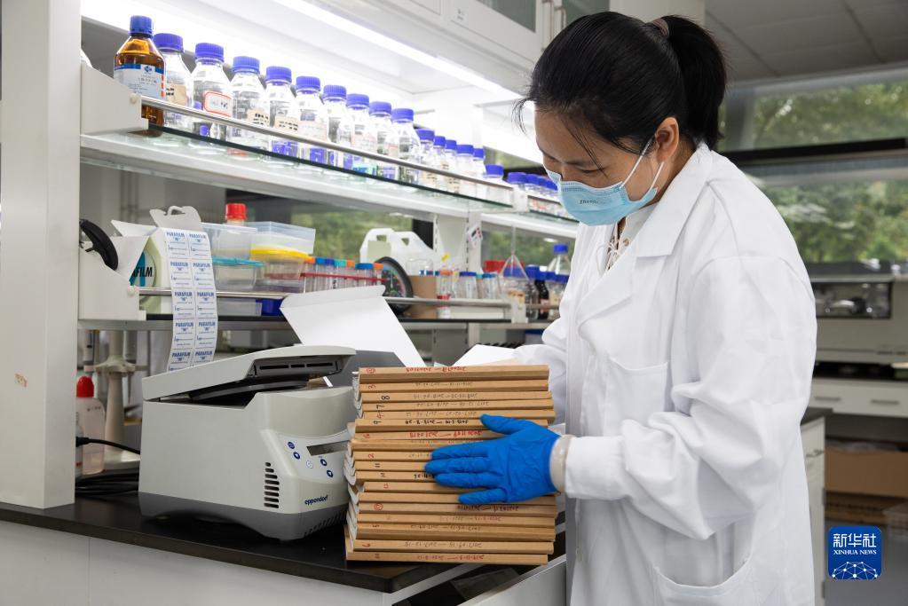 我国科学家突破二氧化碳人工合成淀粉技术