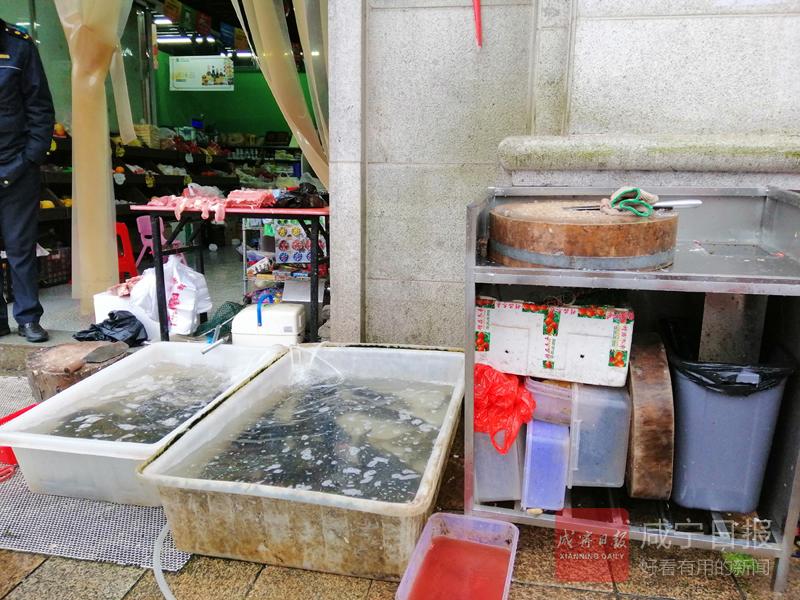 商户当街宰鱼影响环境