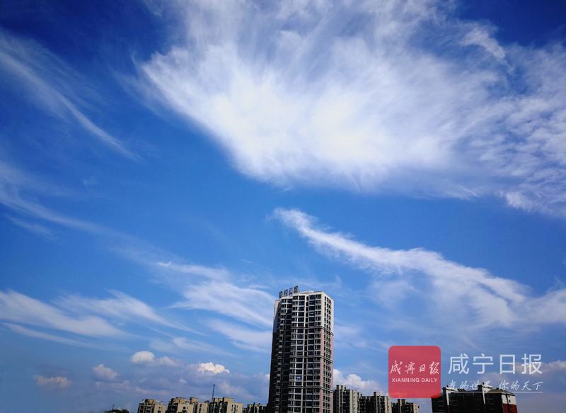 夏日,来桂乡仰望蓝天