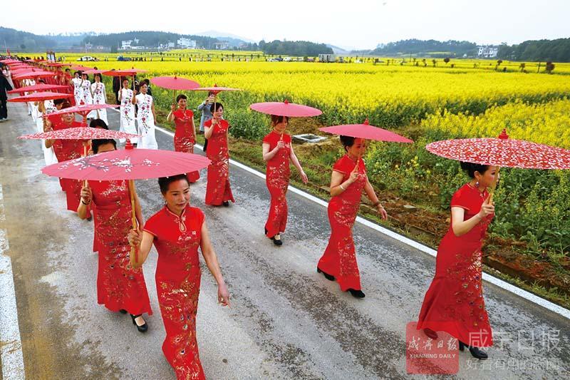 组图:春风十里,油菜花海等你——咸宁美丽乡村行活动侧记