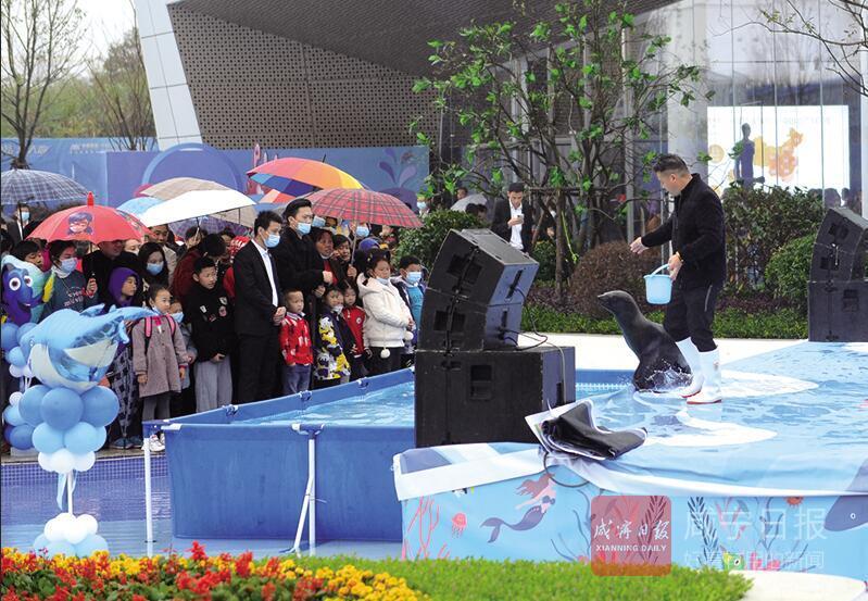组图:香报小记者梦幻海洋节里欢乐多 看企鹅 赏海狮 逗鹦鹉
