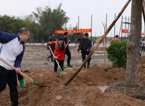 咸宁高新区联合中建三局义务植树  助力精准扶贫