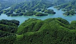 省领导来咸宁调研时要求把绿色理念贯穿建设始终