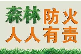 咸寧市召開電視電話會把森林防滅火工作抓緊抓實