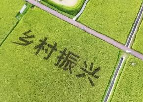 咸寧市領導到鄉村振興聯系點調研時要求扎實鞏固拓展脫貧攻堅成果