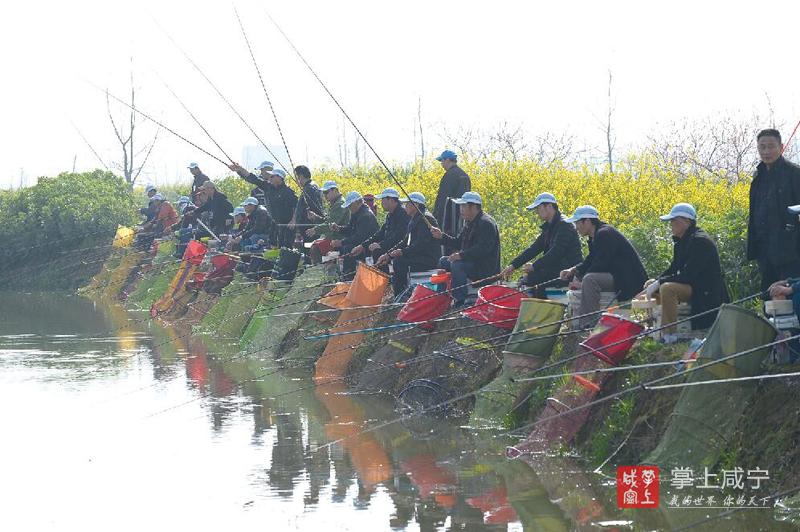 图文:钓鱼比赛