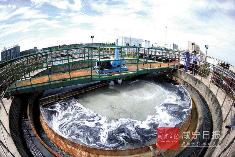 图文:处理化工污水 安全排放长江
