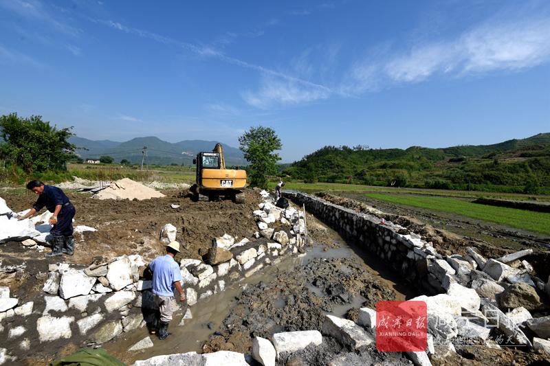 图文:重建农田水渠