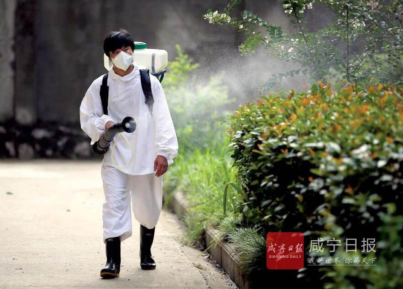 图文:小区消毒消杀