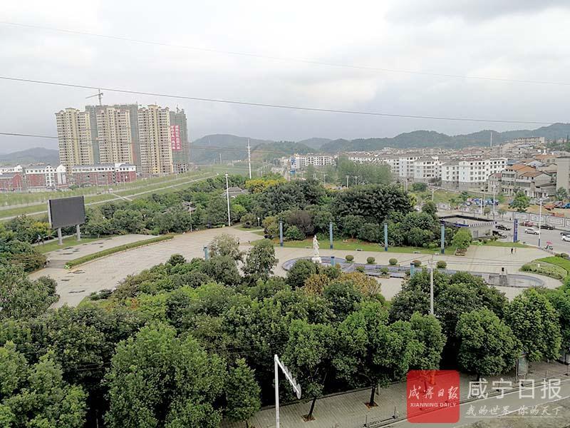 图文:桂花公园绿满园