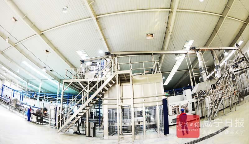 图文:今麦郎饮品新生产线投产