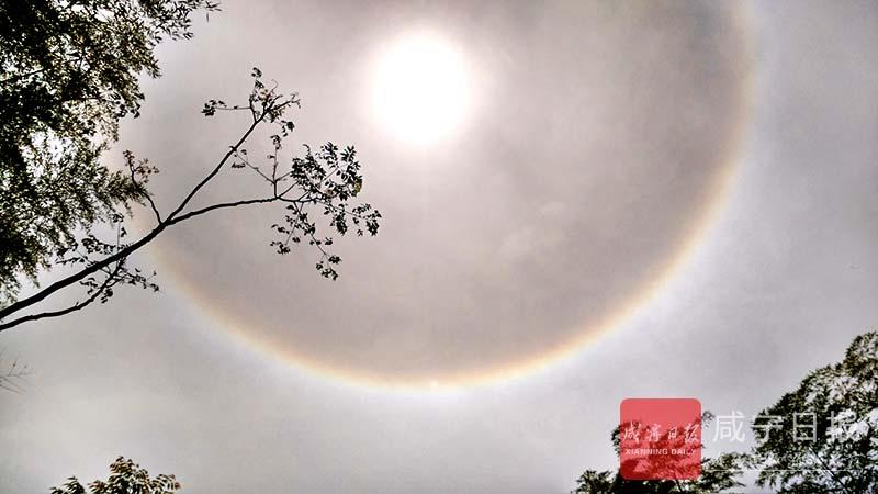 图文:咸宁天空日晕奇观