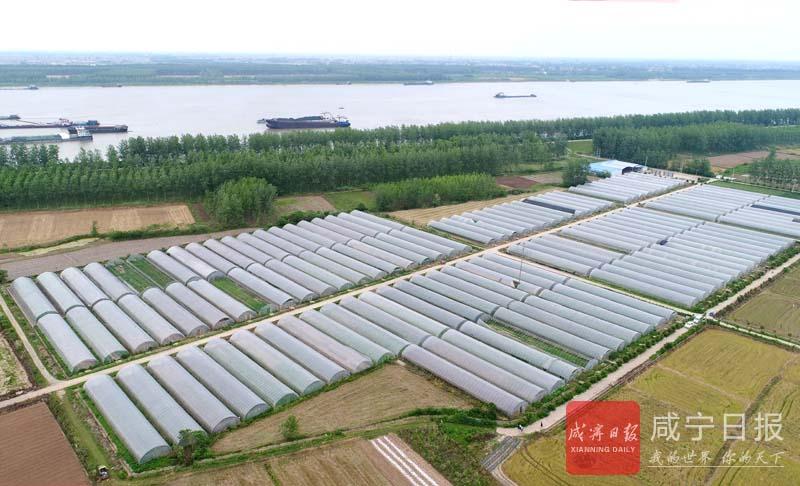 图文:发展有机农业
