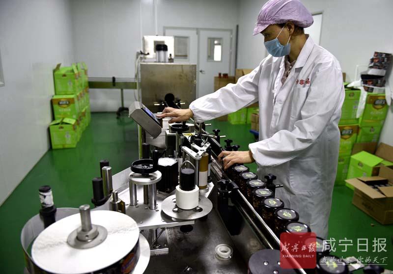 图文:紫苏辣椒酱 年产值过亿