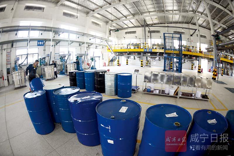 图文:蓝洋环保科技投产