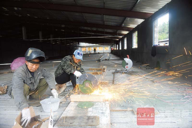 图文:建猪场兴产业