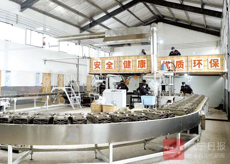 图文:大德和茶业生产忙