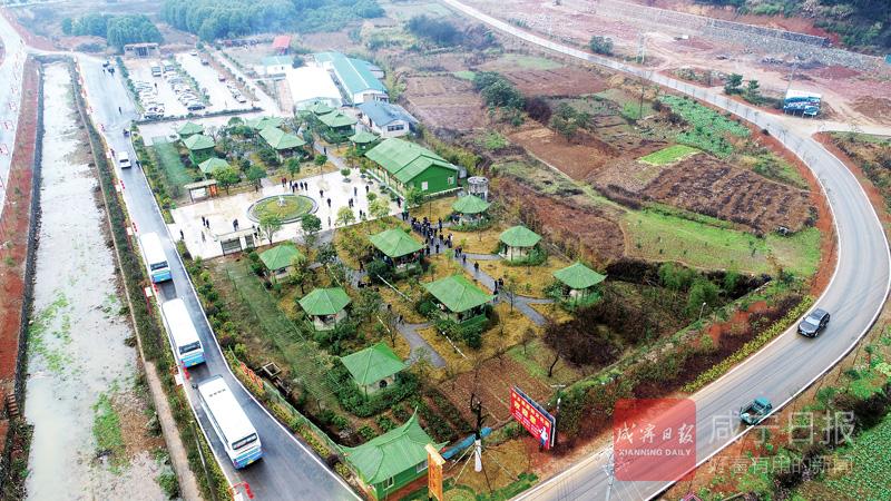 图文:生态绿色富裕村