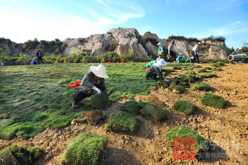 图文:废弃矿山变公园