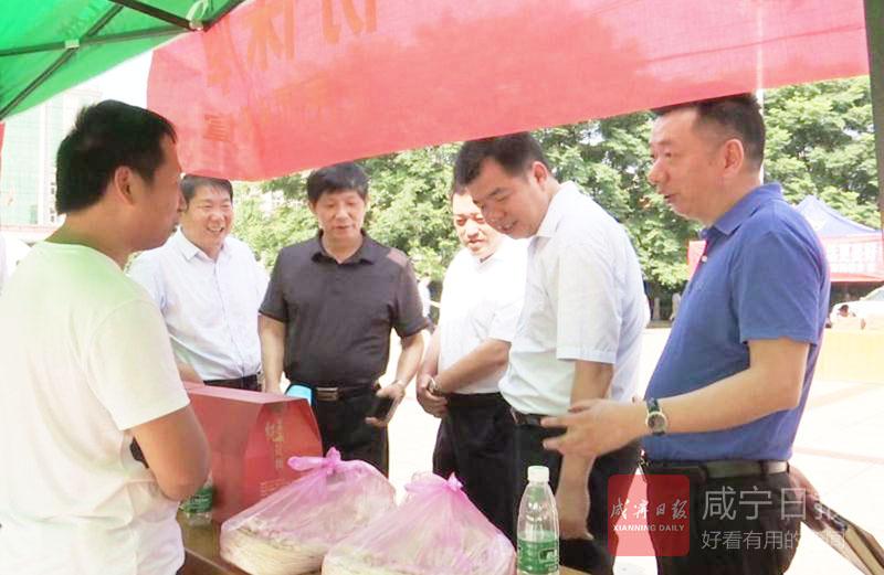 图文:通山启动食品安全宣传周活动