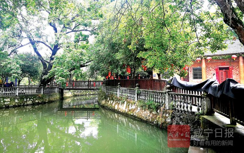 图文:浮山打造绿色美丽乡村