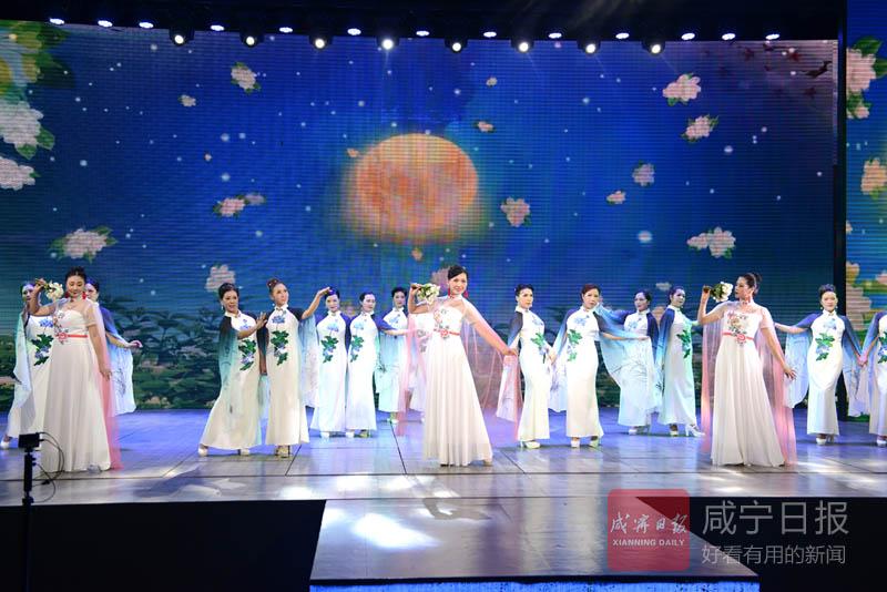 图文:旗袍丽人秀