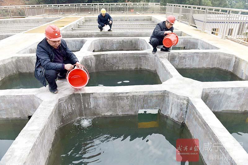 圖文:讓群眾吃上安全水