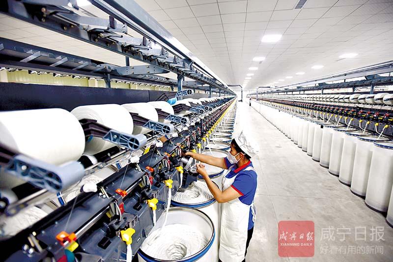图文:完善产业链提升竞争力