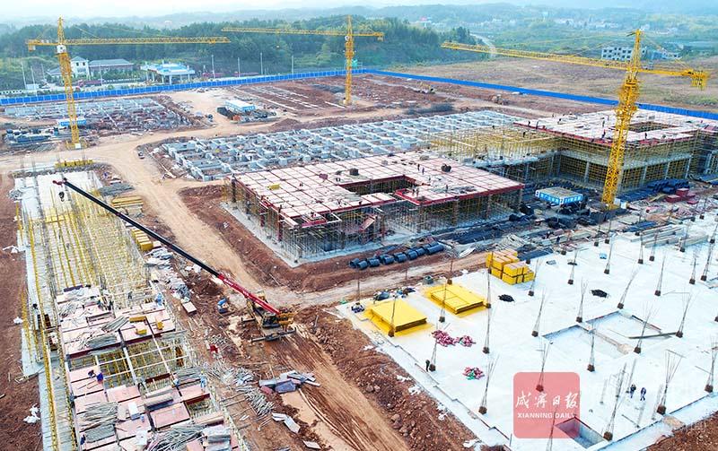 图文:南林桥双创产业园加快建设