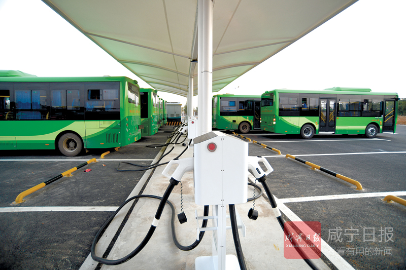 图文:电动公交绿色出行