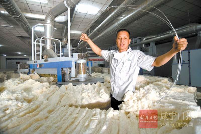 图文:嘉鱼汉麻生物科技公司设置党员先锋岗 企业效益往上涨
