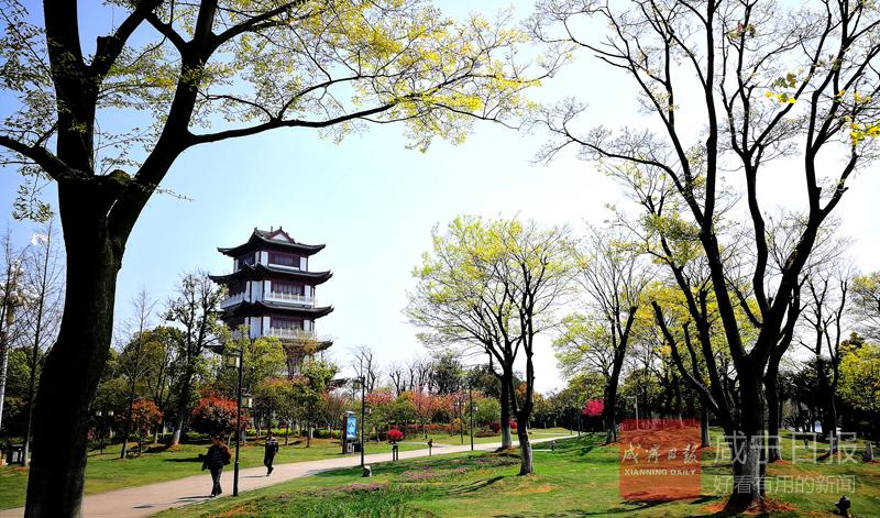 组图:春暖二乔公园