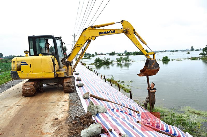 圖文:防浪護堤