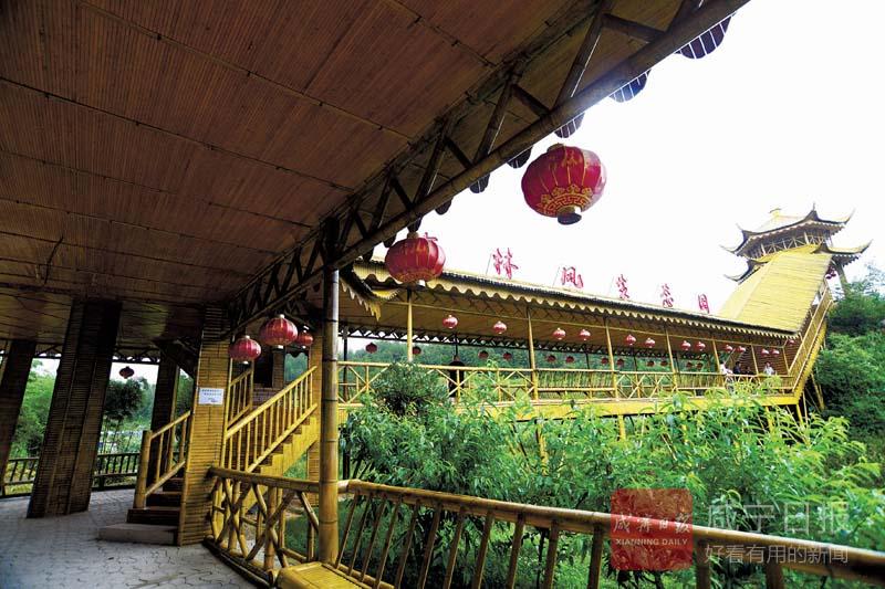 圖文:楊芳林竹林風生態園