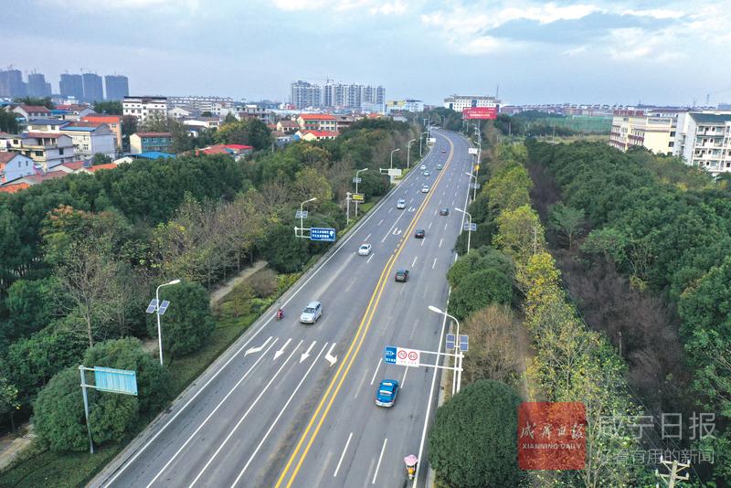 圖文:桂鄉大道大修主體工程完工