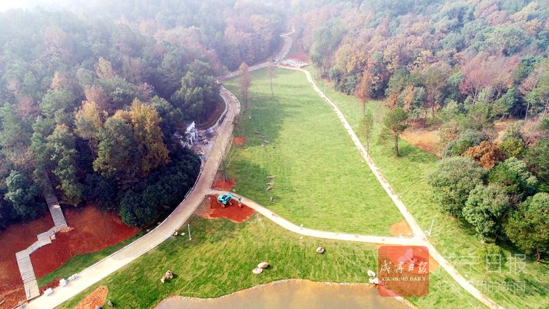 圖文:十六潭公園完善綠道網體系