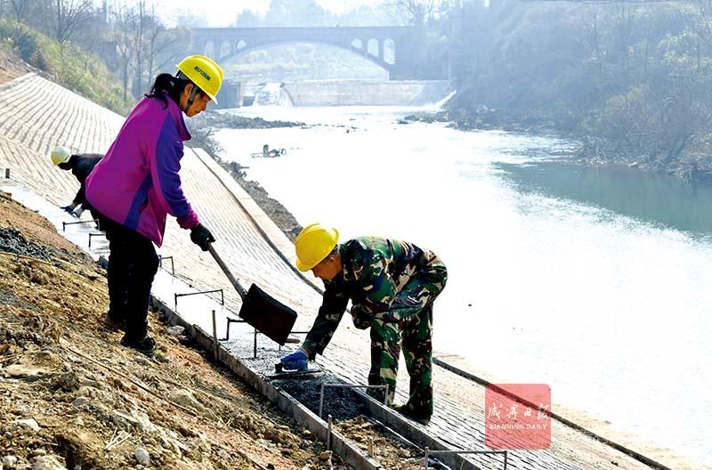 图文:修复河堤保安全
