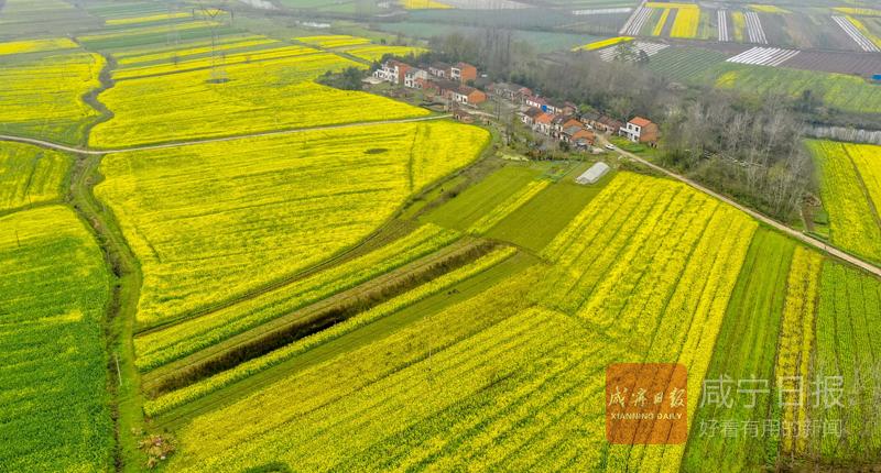 图文:农旅融合助增收