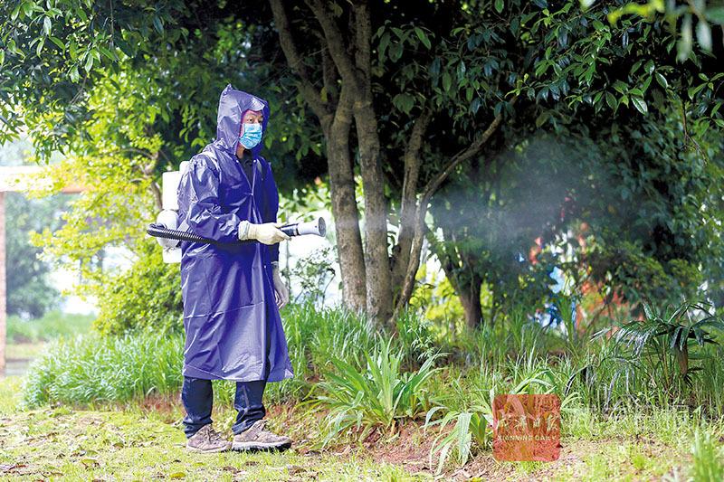 圖文:咸安開展病媒生物防制消殺工作