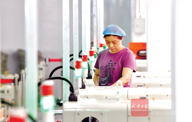 图文:中科华冶一个月建成投产
