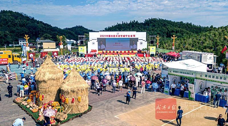 图文:共庆中国农民丰收节