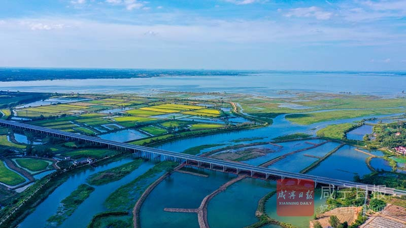 图文:碧水入湖生态修复加紧施工