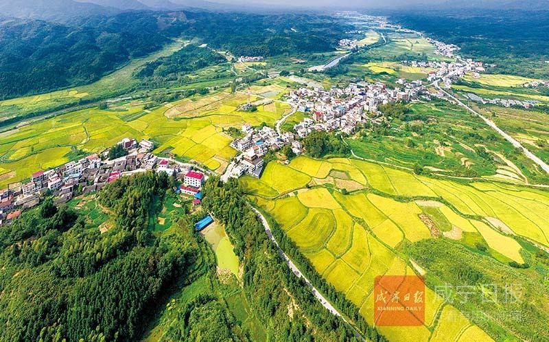圖文:改善人居環境?建設美麗鄉村