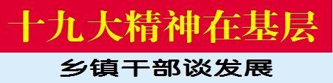 咸安双溪桥镇党委书记汪性智:产业助推经济发展 党建培育精神动力