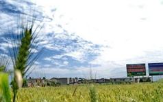嘉鱼入选首批国家农村产业融合示范园创建名单