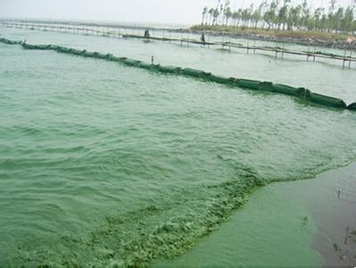 【省级环保督察整改进行时】通山水污染防治到边到角