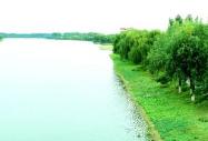 百里绿堤护大江  嘉鱼�洲湾实行多重包保责任制