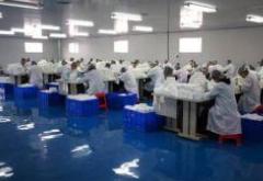 咸安区加速新旧动能转换  瞄准新兴产业发展方向